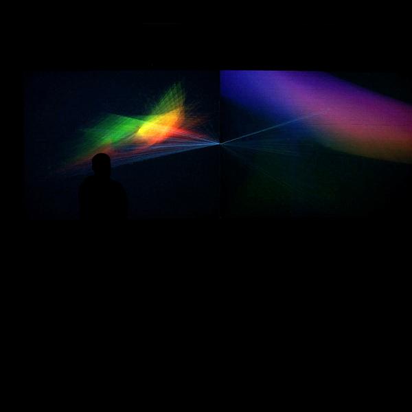 cambrian explosion